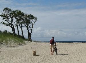 Сосновые иглы в солёном песке (Песни Балтики)